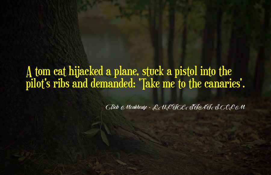 Best Pilot Quotes #143702