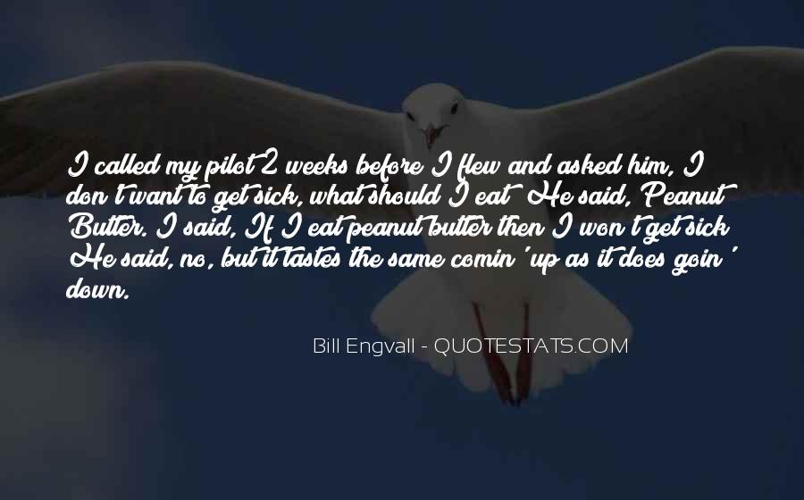 Best Pilot Quotes #44341