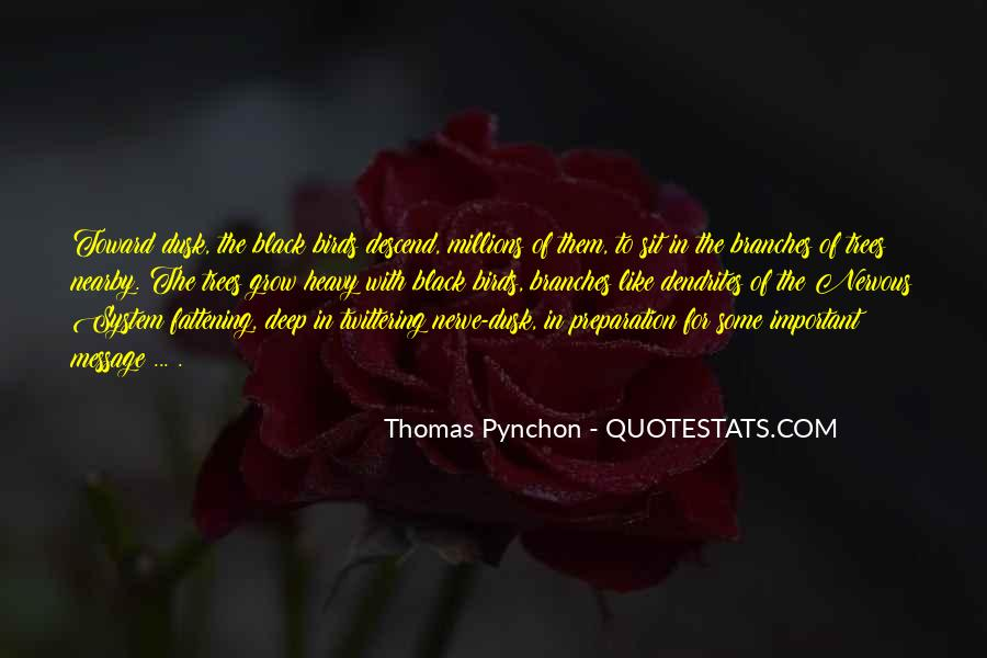 Best Pynchon Quotes #13953