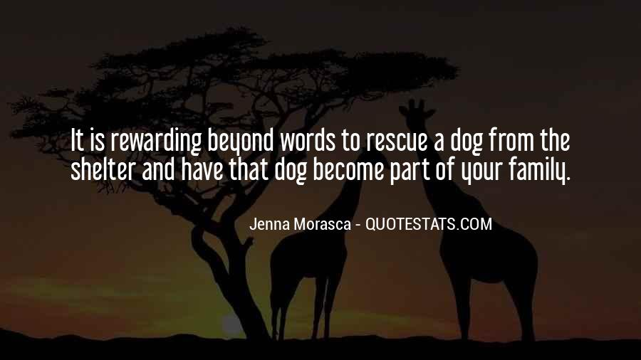 Top 30 Best Rescue Dog Quotes: Famous Quotes & Sayings About ...