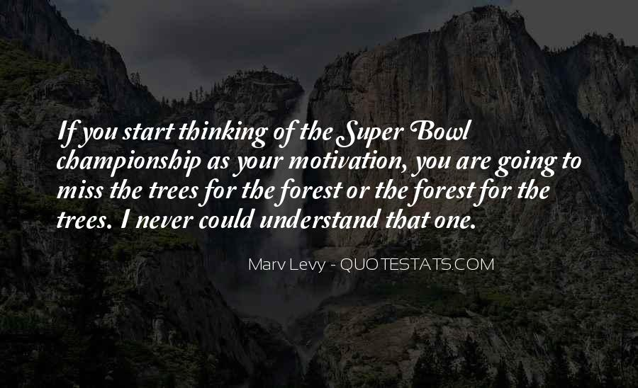 Quotes About The Super Bowl #521764