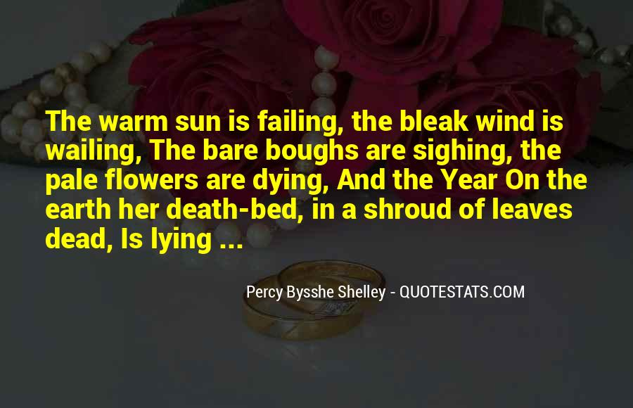 Quotes About Lying In The Sun #1048299