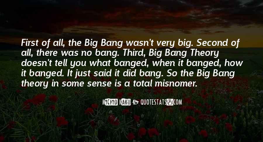 Big Bang Theory Top Quotes #69880