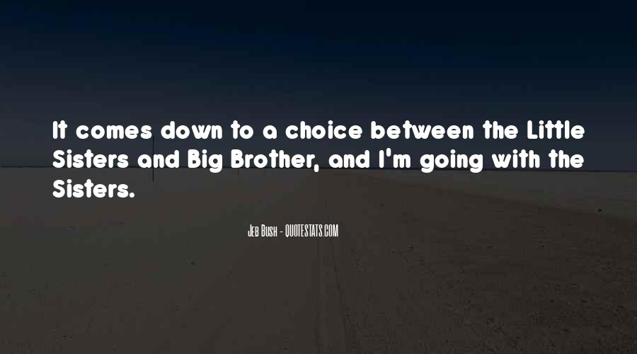 Big Little Brother Quotes #1132209