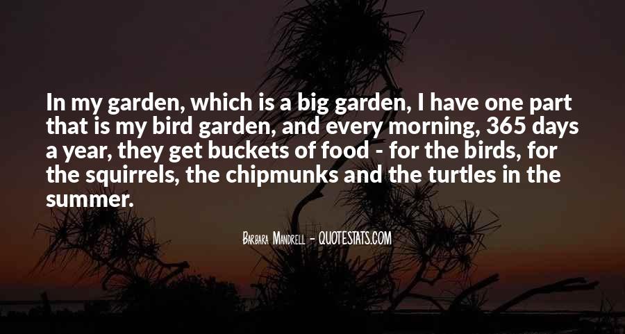 Bird Food Quotes #825263