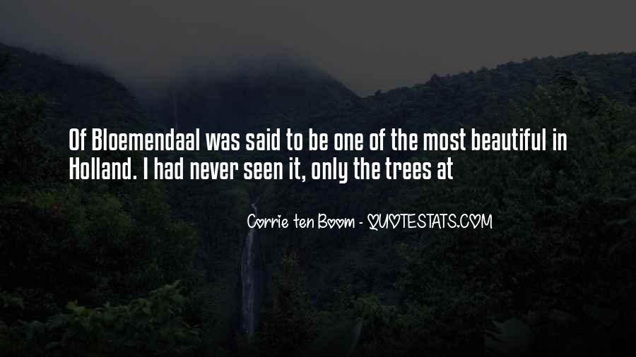 Boom Boom Quotes #303082