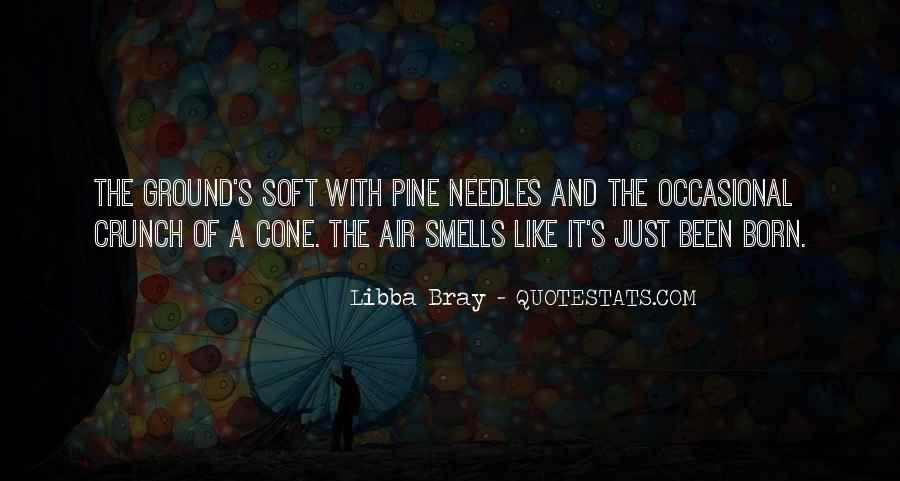 Bray Quotes #144653