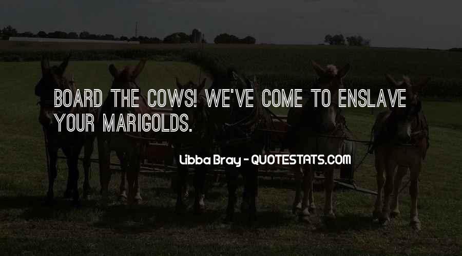 Bray Quotes #35055