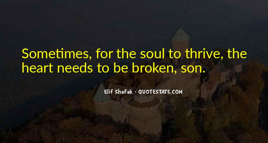 Broken Heart And Soul Quotes #1623241