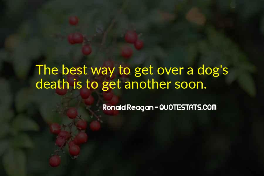 Quotes About Loss Of Dog #40868