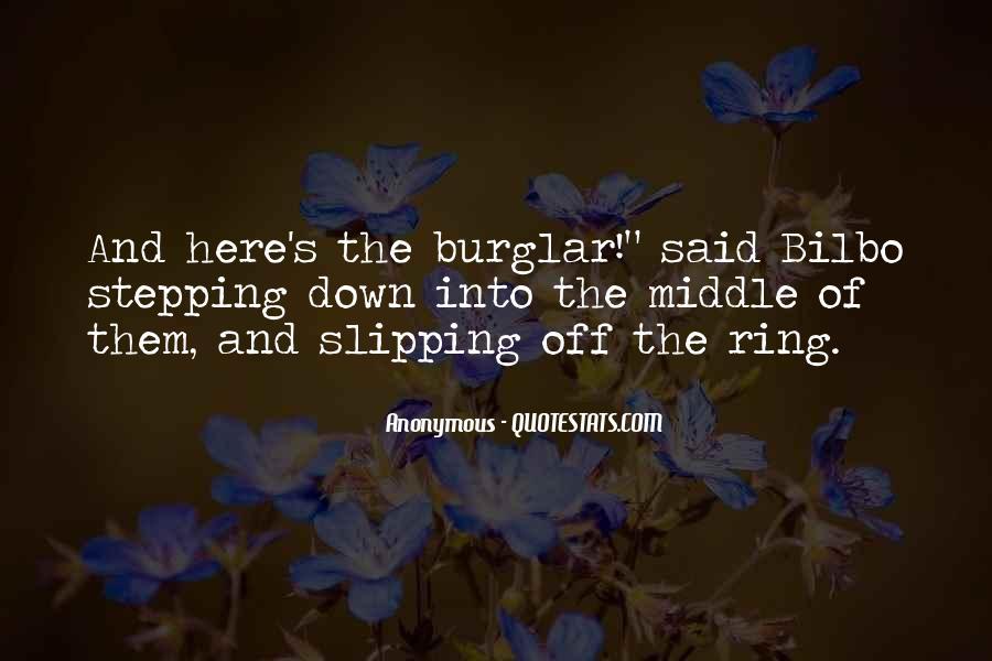 Burglar Quotes #1370812