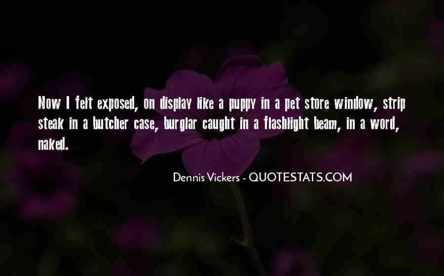 Burglar Quotes #1552176