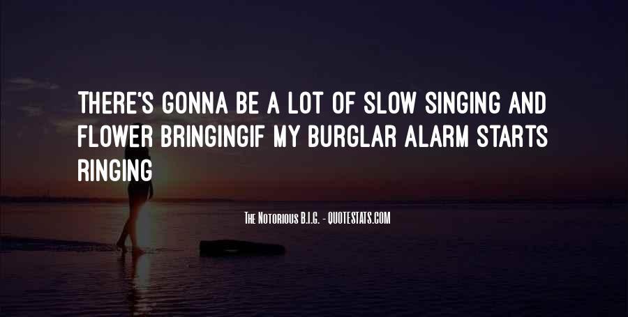 Burglar Quotes #965814