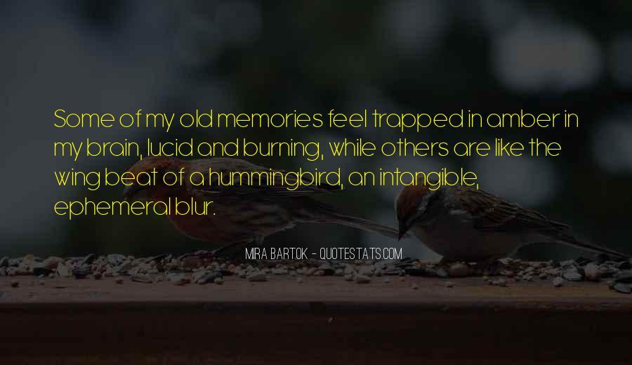 Burning Memories Quotes #554048