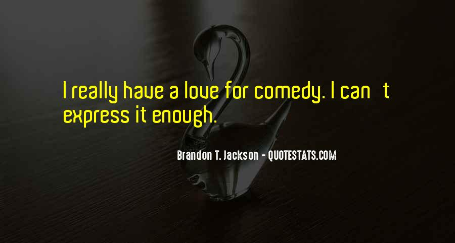 Cannot Express My Love Quotes #13230
