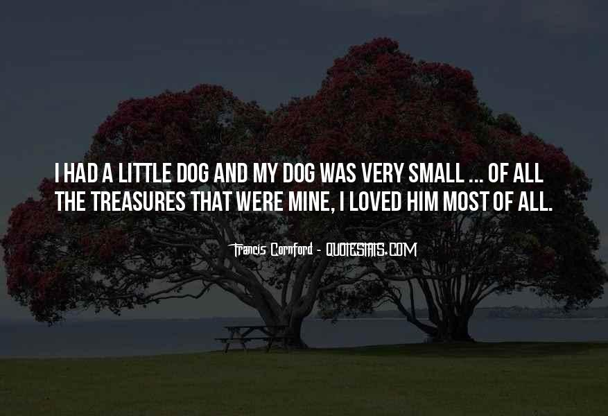 Quotes About Little Treasures #728272