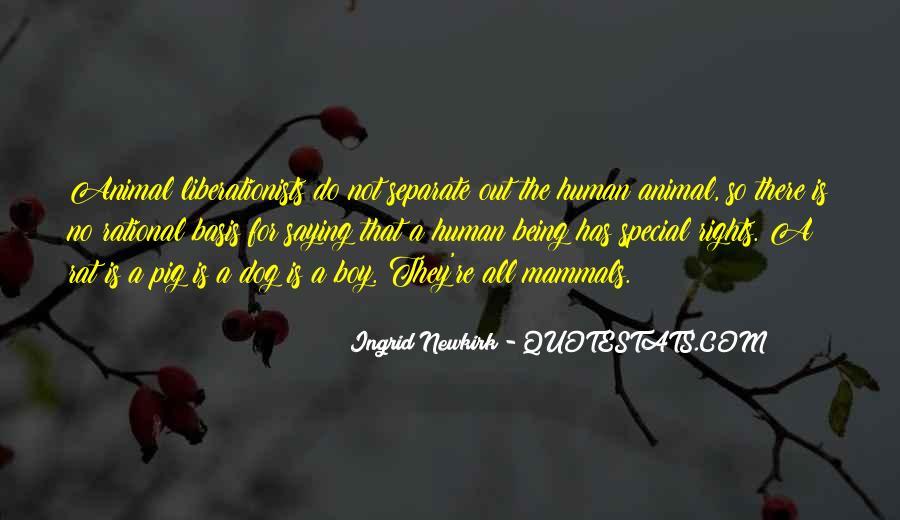 Quotes About Lithophanes #1312694