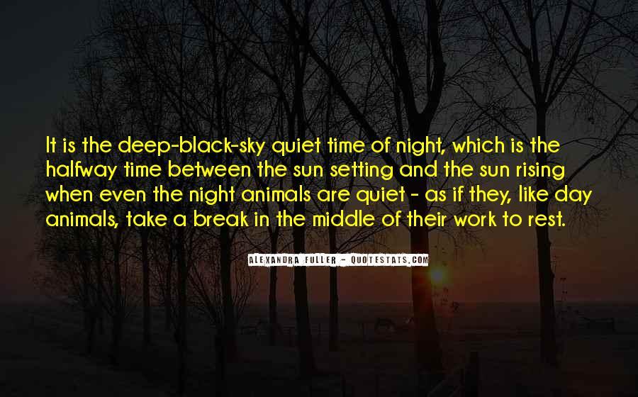 Quotes About Lithophanes #166366
