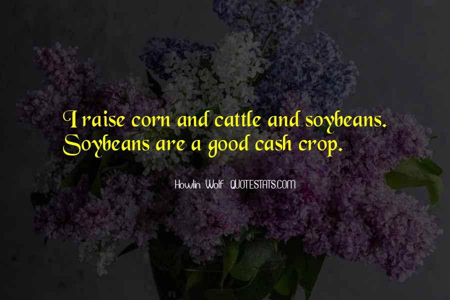 Cash Crop Quotes #147256
