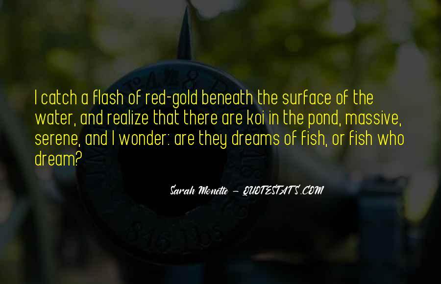 Catch Your Dream Quotes #635683