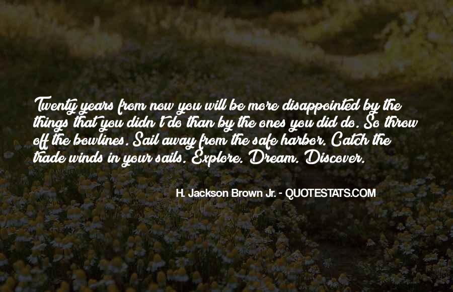 Catch Your Dream Quotes #752814