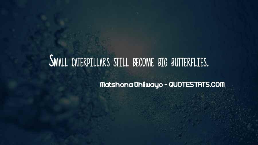 Caterpillars To Butterflies Quotes #1583733