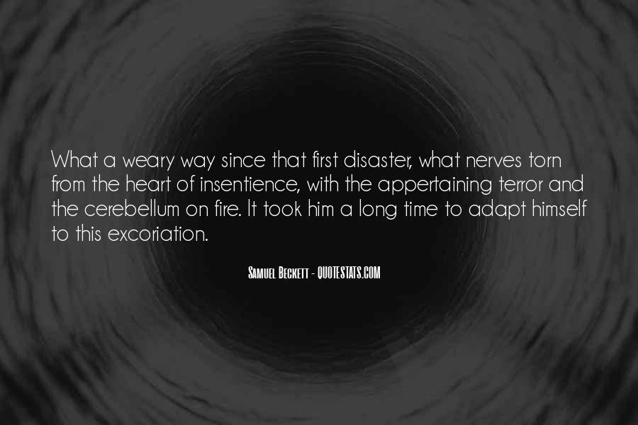 Cerebellum Quotes #1393928