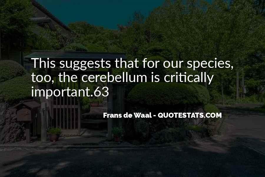 Cerebellum Quotes #940034