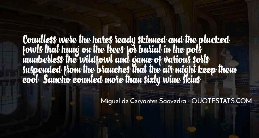 Cervantes Wine Quotes #842123