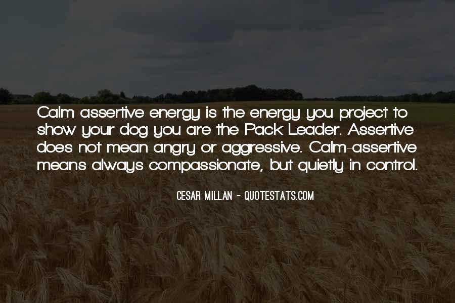 Cesar Millan Pack Leader Quotes #480903