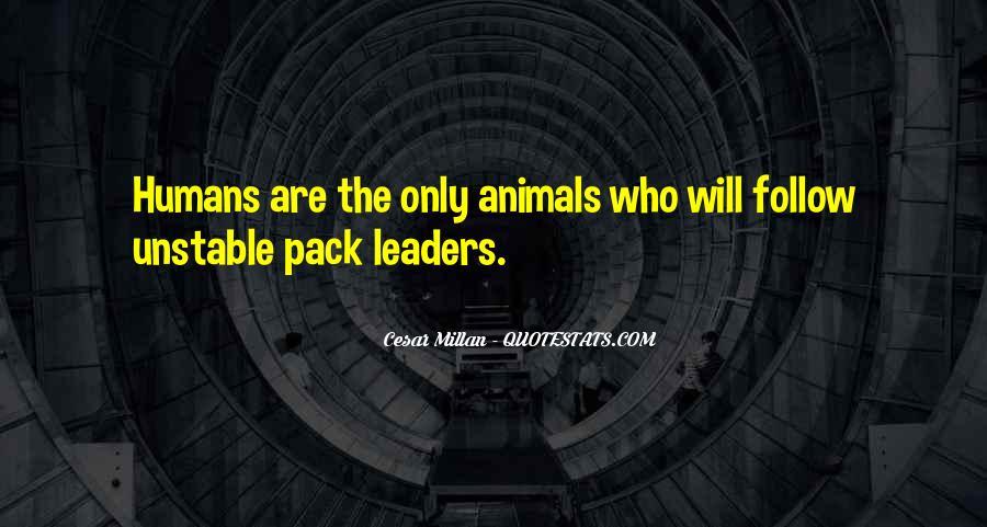 Cesar Millan Pack Leader Quotes #947404