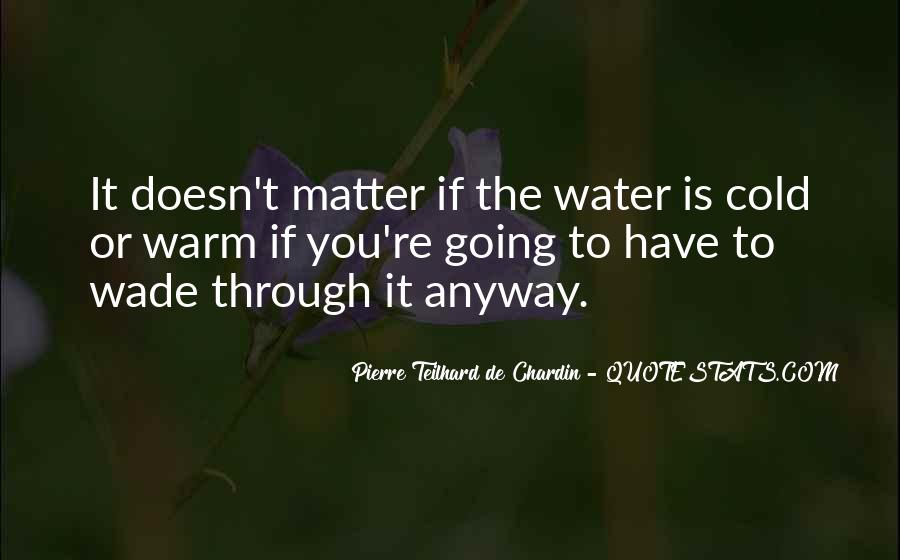 Chardin Quotes #112261
