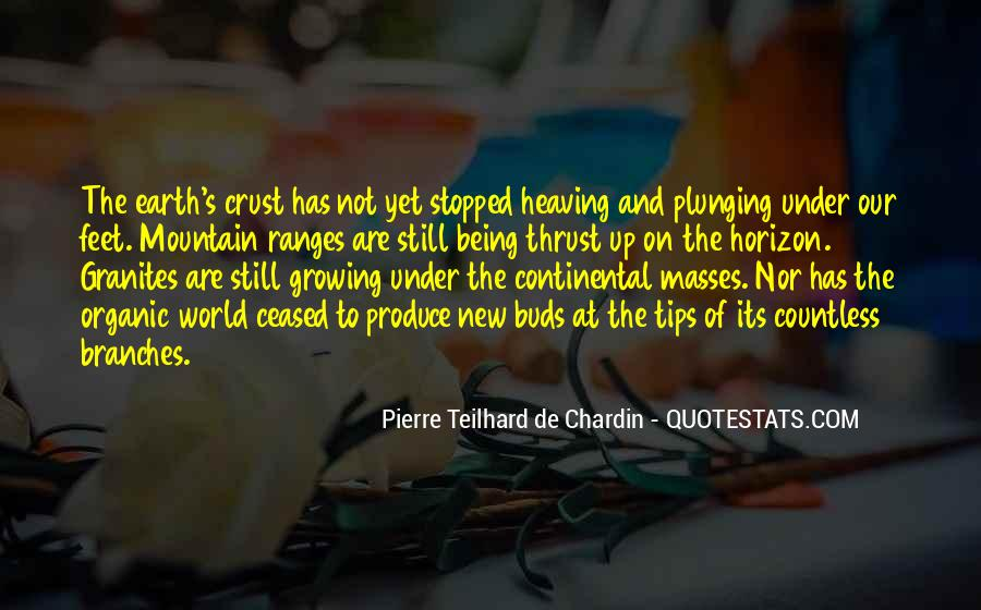 Chardin Quotes #118922