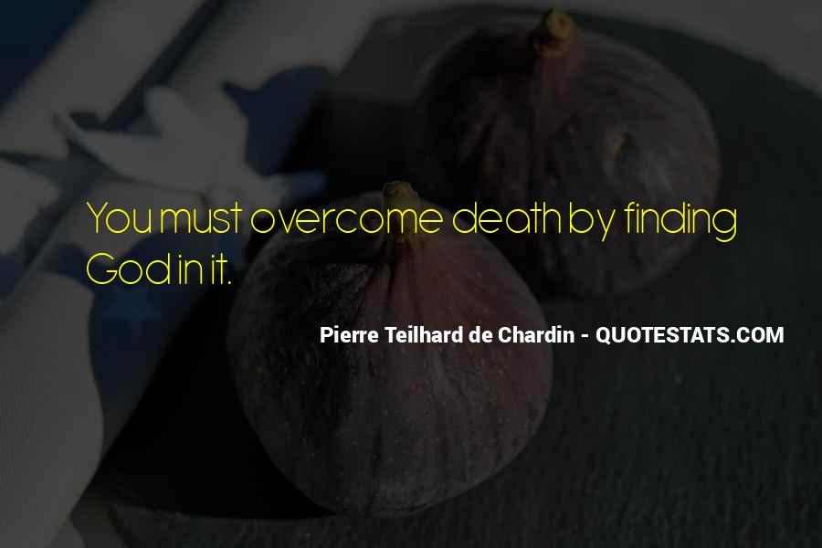 Chardin Quotes #133452