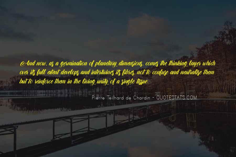 Chardin Quotes #479096