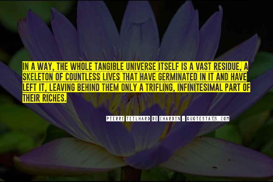 Chardin Quotes #651396