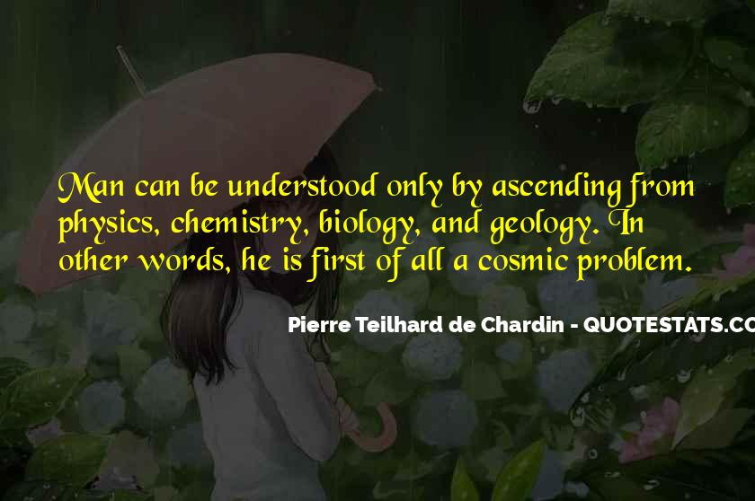 Chardin Quotes #9140