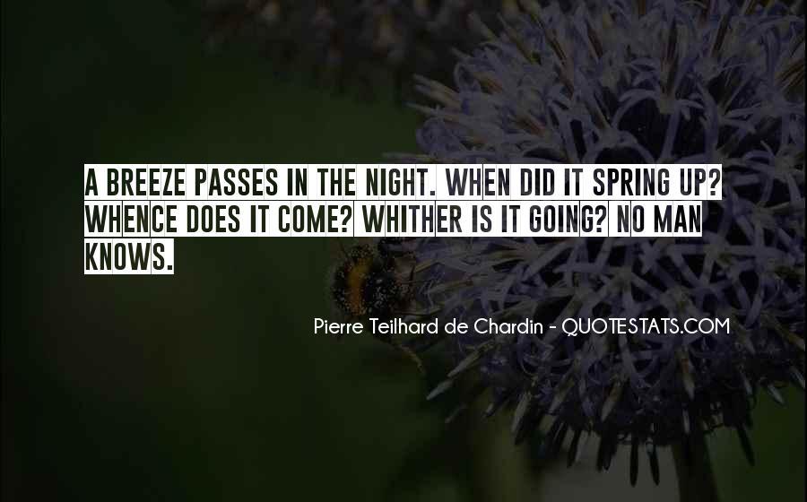 Chardin Quotes #970455