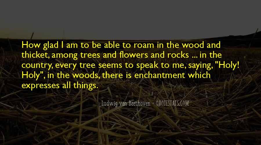 Chief Kamiakin Quotes #1824021
