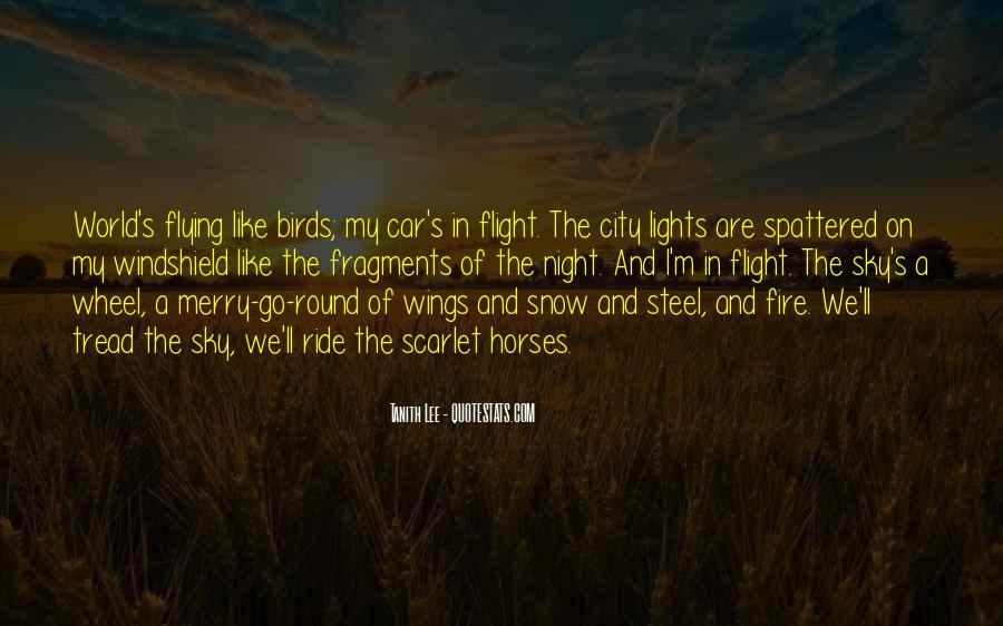 City Night Sky Quotes #1428152