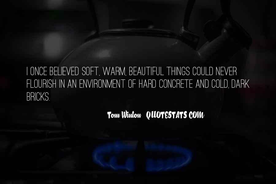 Cold And Beautiful Quotes #1493725