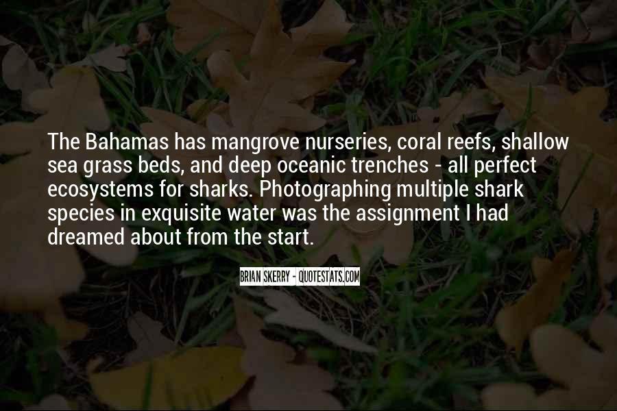 Coral Sea Quotes #1196676