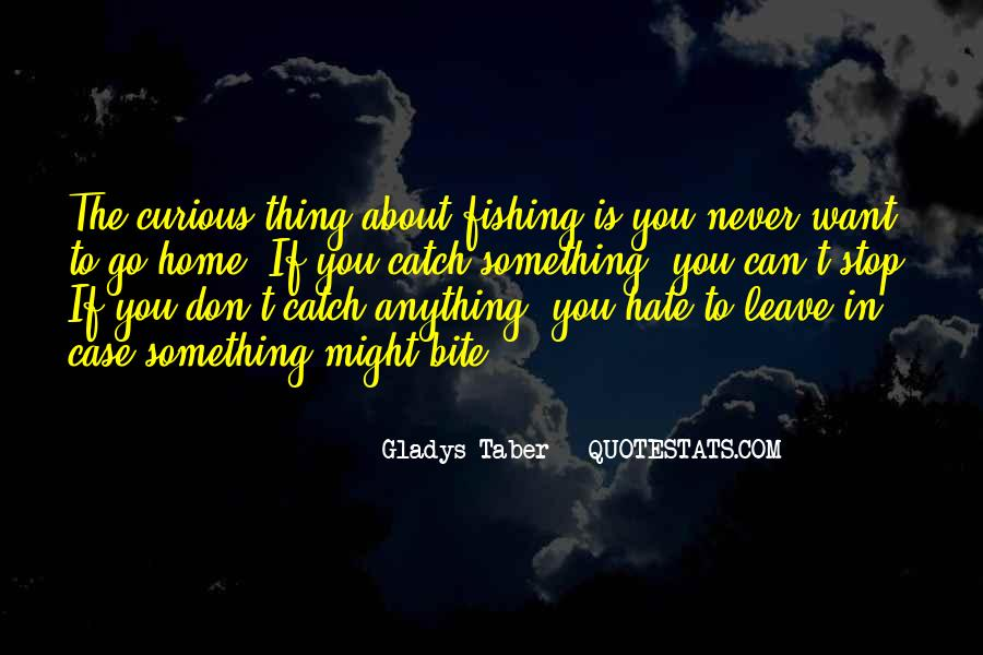 Could Never Hate You Quotes #164566