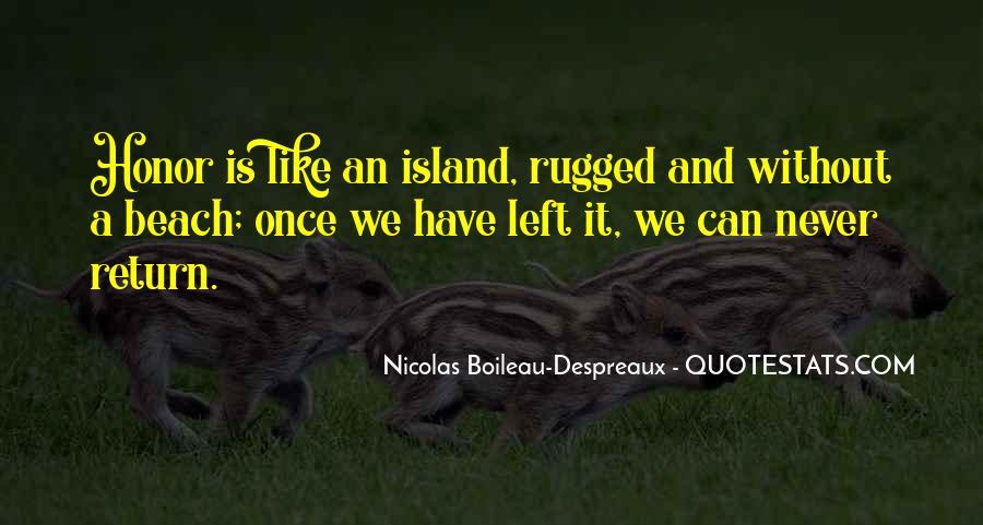 Courage To Pursue Dreams Quotes #1102282