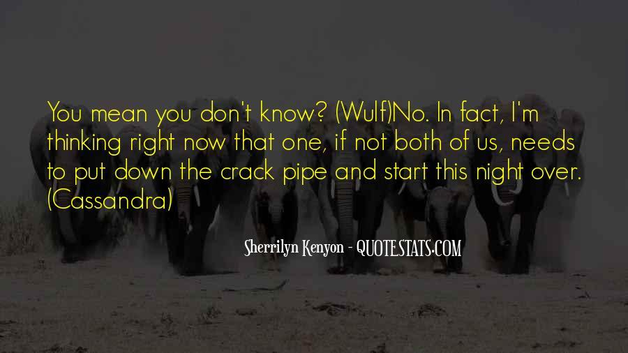 Crack Pipe Quotes #1703136