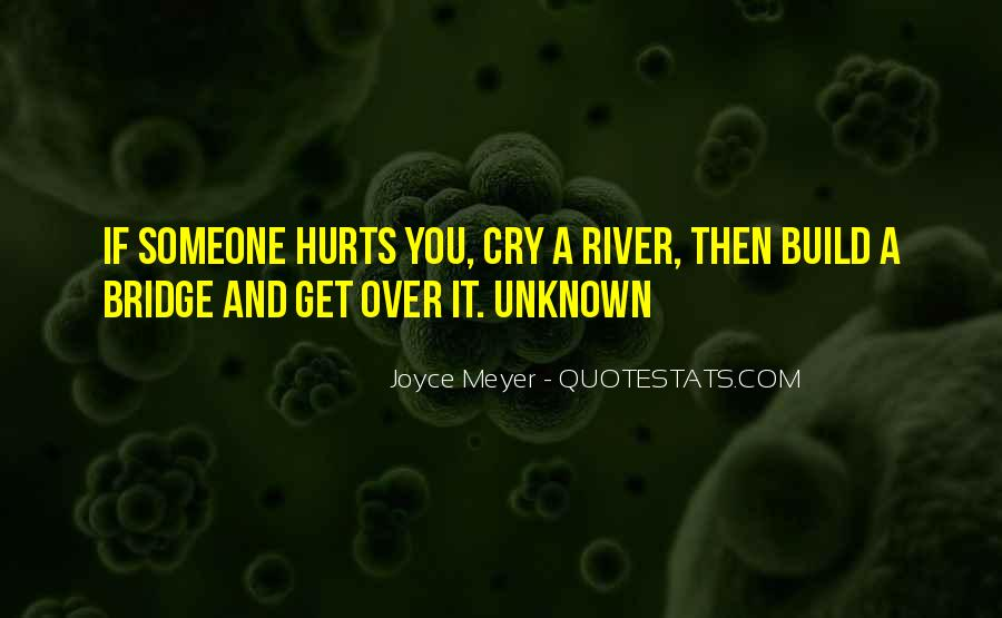 Cry Me A River Build A Bridge And Get Over It Quotes #549744