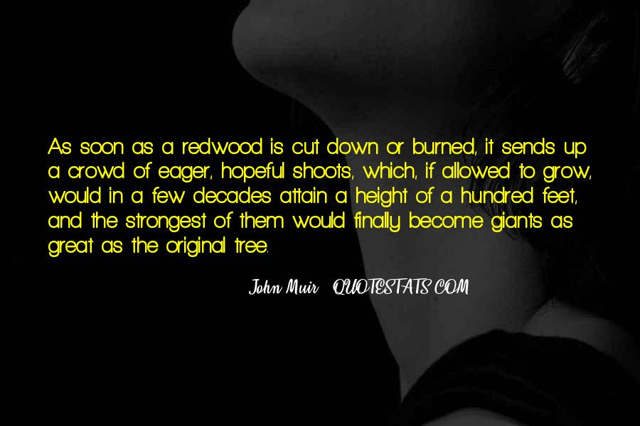 Cut Down Tree Quotes #1325055