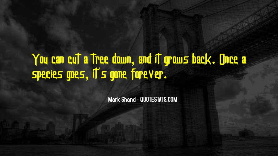 Cut Down Tree Quotes #568639