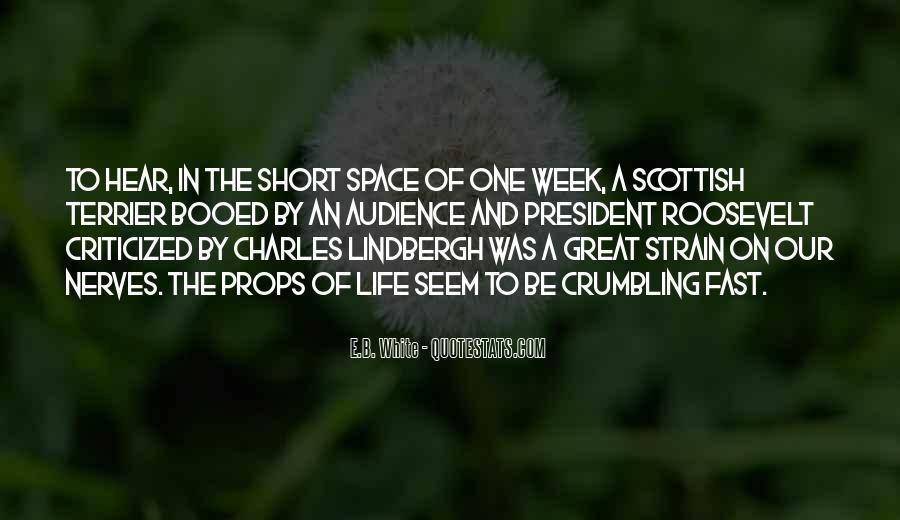 Cute Honey Bee Quotes #1204654