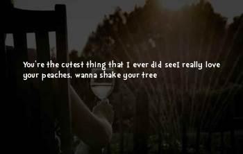 Cutest Ever Love Quotes